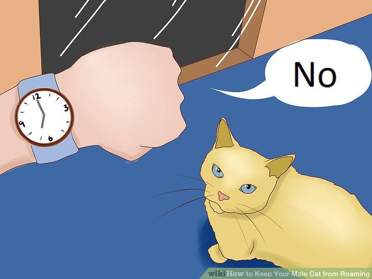 Notieren Sie die Uhrzeit.