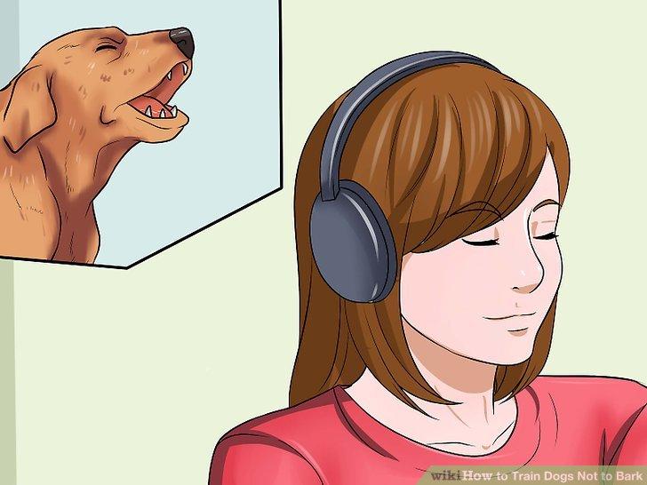 Ignorieren Sie das Bellen Ihres Hundes.