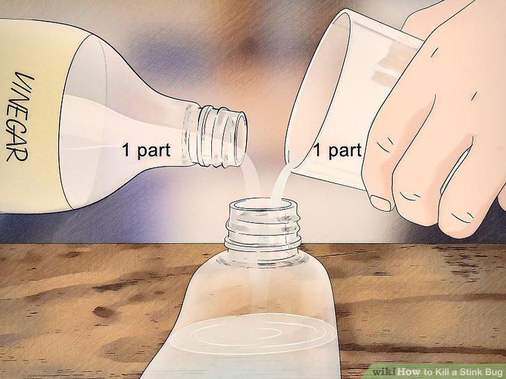 Use white vinegar.