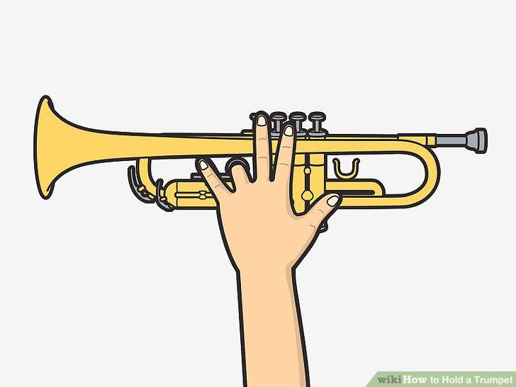 Stecken Sie Ihren linken Ringfinger durch den Ring der Trompete.