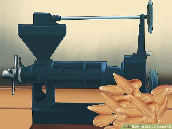 Legen Sie die Mandeln oben in die Ölpresse.