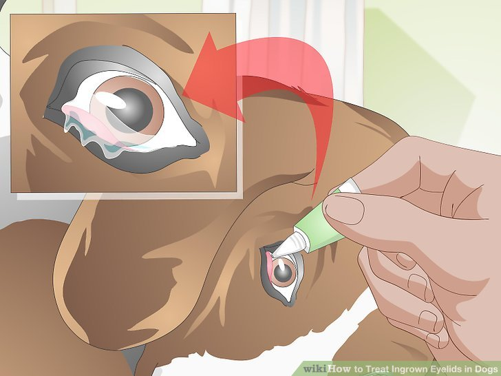Überprüfen Sie auf sekundäre Augenprobleme.