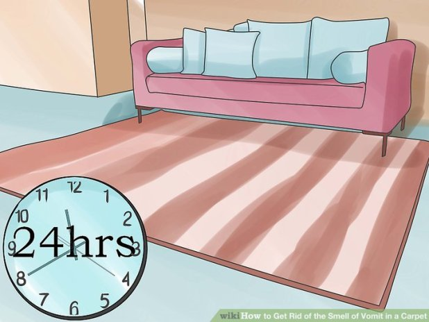 how to get sick smell out of sofa. Black Bedroom Furniture Sets. Home Design Ideas