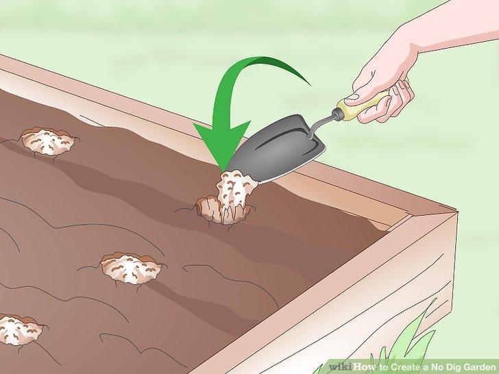 Create a No Dig Garden Step 15.jpg