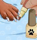4 easy ways stop dog's quick
