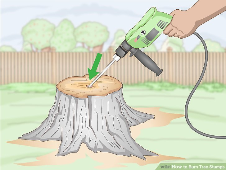 How To Burn Out A Stump With Oil