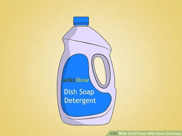 how to kill fleas in yard with soap