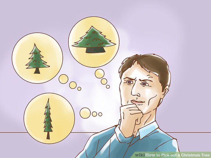 How To Pick Out A Christmas Tree 7 Steps With Pictures