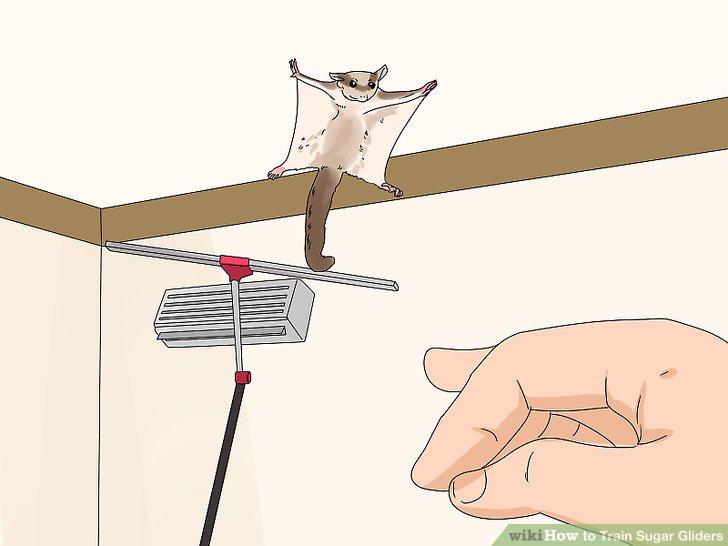 Trainiere deinen Schirm in einem kleinen Raum.