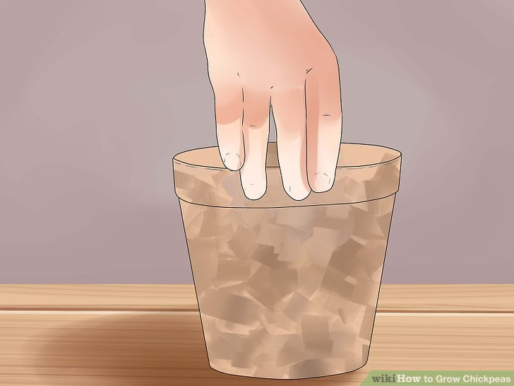 Use biodegradable pots.