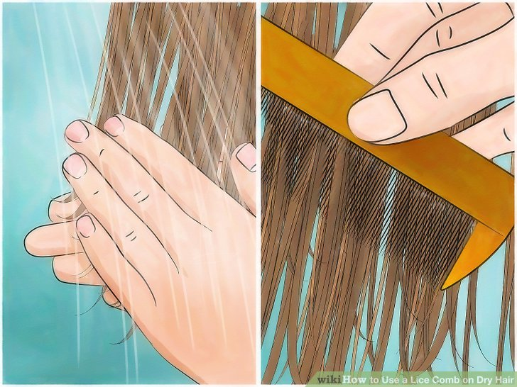 Wet-comb the hair.