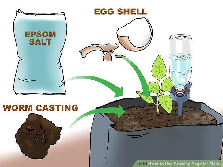 How To Use Growing Bags For Plants 15 Steps With Pictures