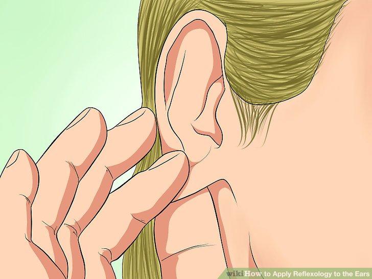 Bereiten Sie Ihre Ohren auf Berührung vor.