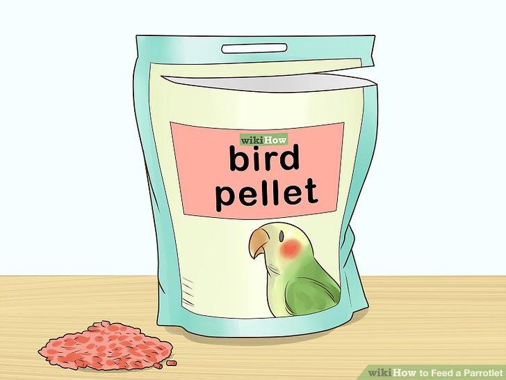 Gib deinem Vogel Pelletfutter.