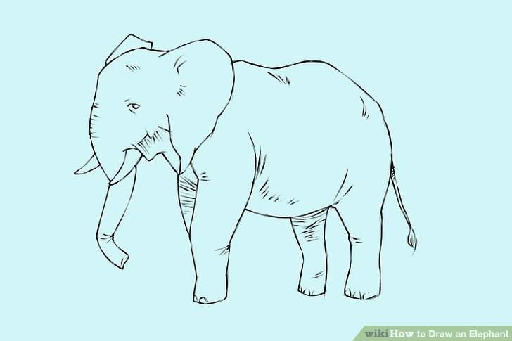 how to draw shadow diagrams acura integra wiring diagram 4 ways an elephant - wikihow