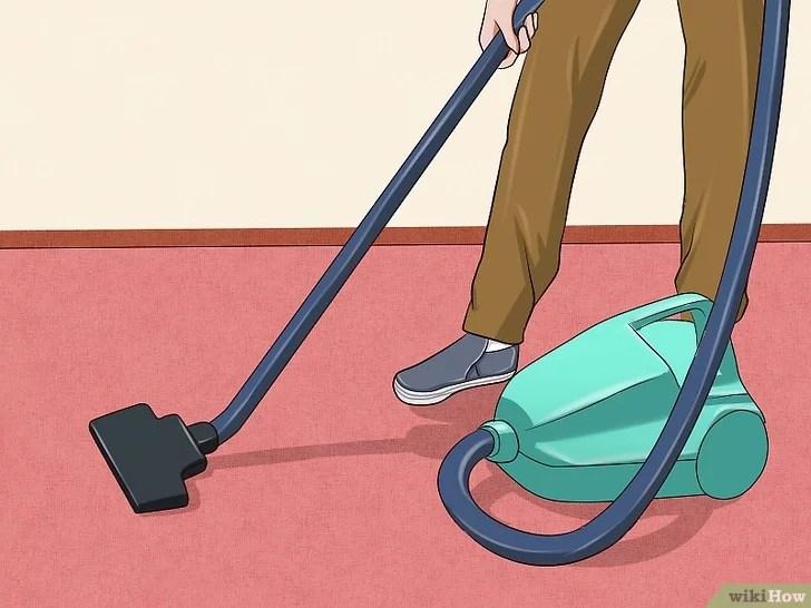Immagine titolata Remove Cat Urine Smell Step 12