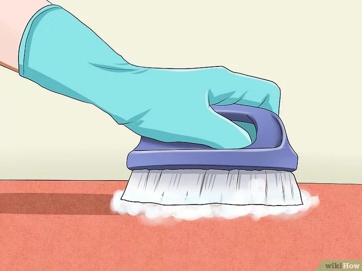Immagine titolata Remove Cat Urine Smell Step 10