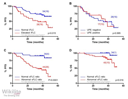 small resolution of abnormal sflc measurements stratify patients with normal urine results after induction
