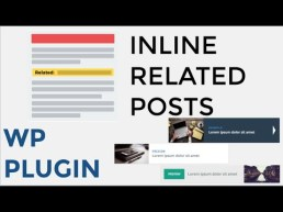 How to Add Inline Related Posts in WordPress Blog Posts, best related post plugins wp, wp inline related plugin
