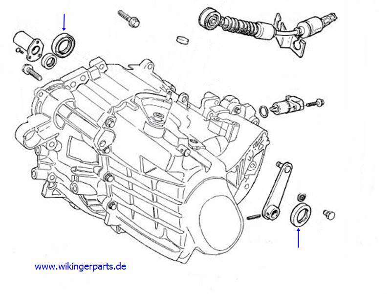 Volvo Dichtring 6843481 › Wikingerparts