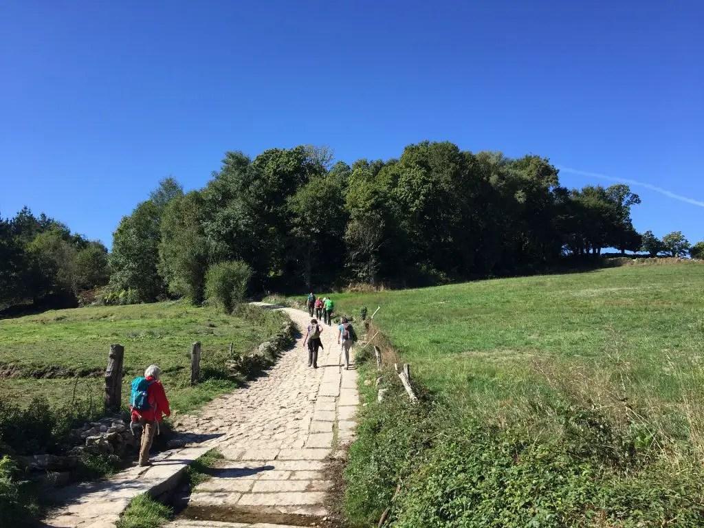camino de santiago najera