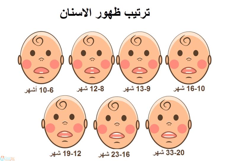 ترتيب ظهور اسنان الرضع