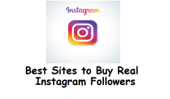 Buy Real Instagram Followers-www.wikishout.com