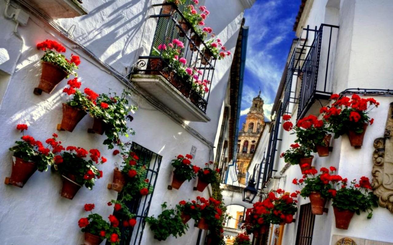 Córdoba – Bloemen In Smalle Straten (foto Stock)