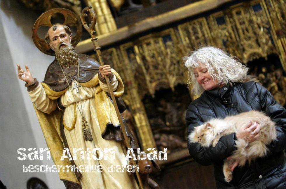 San Antonio Abad: De Dag Dat Alle Dieren Gezegend Worden Door De Kerk In Spanje