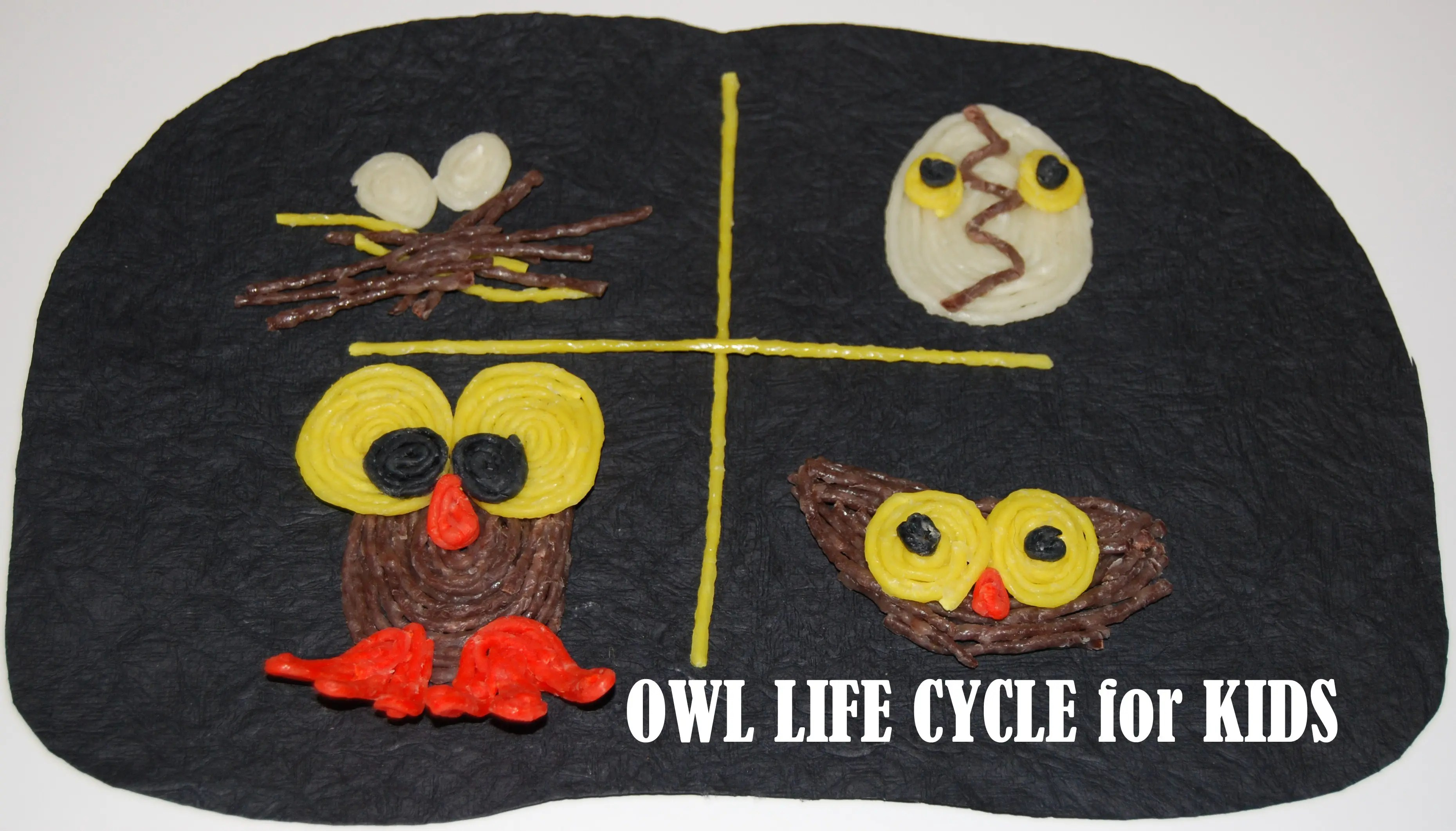 Wikki Stix Owl Life Cycle Sequencing Cards And Crafts For