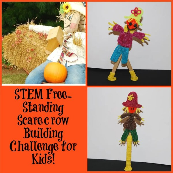 Stem Education Free-standing Scarecrow Building