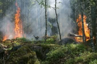 Nieuw risicosysteem voor brandgevaar