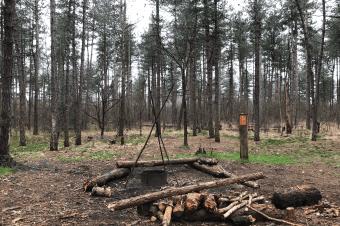 Persbericht: Paalkampeerplaatsen West-Brabant per direct opgeheven
