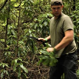 Bushcraft & Survival Courses