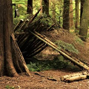 1 Day Woodland Survival & Bushcraft Course - image  on https://www.wild-survivor.co.uk