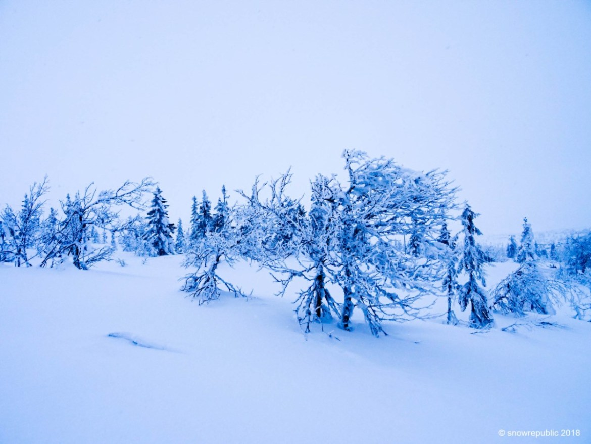 Winter in Trysil Noorwegen. Foto: Edwin Hagenouw
