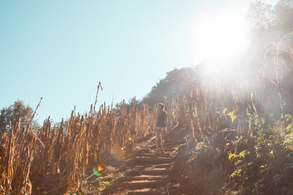 Feldpfad am Vulkan San Pedro