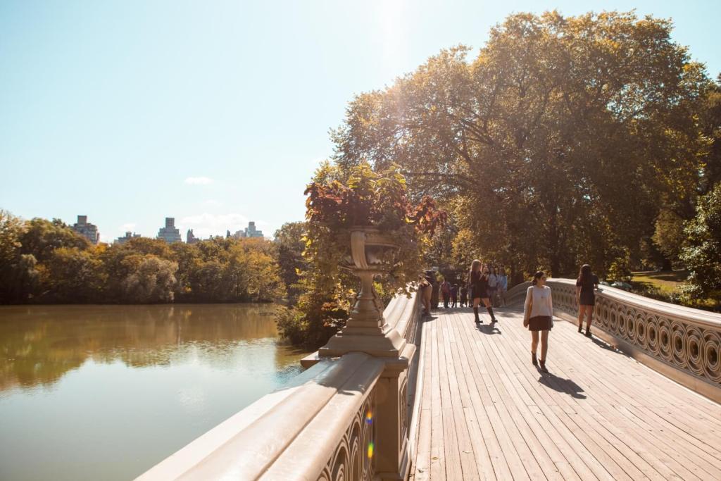 Central Park Brücke in New York