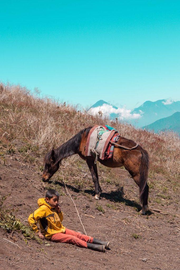 Vulkan Acatenango in Guatemala Pferd