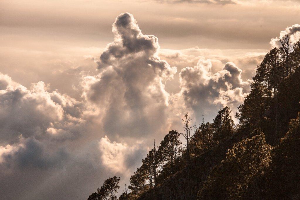 über den Wolken am Vulkan Acatenango in Guatemala