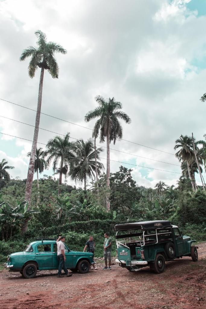 Oldtimer im tropischen Kuba