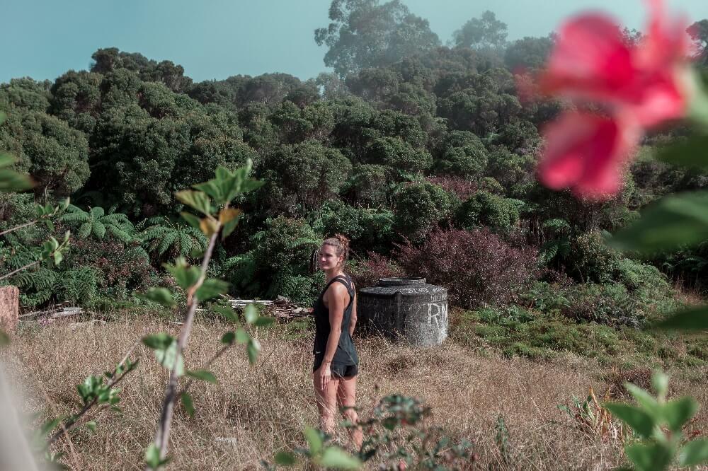 Blume Pico Turquino Wanderung