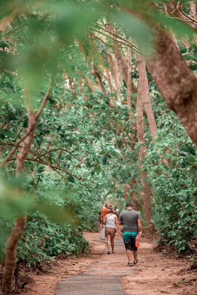 Nationalpark Cahuita Costa Rica