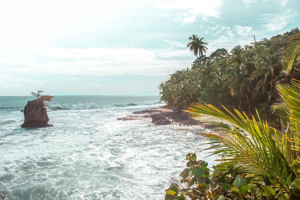 Karibikküste von Costa Rica Nationalpark Manzanillo Küste