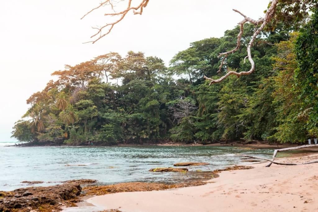 Nationalpark Manzanillo Strand 2