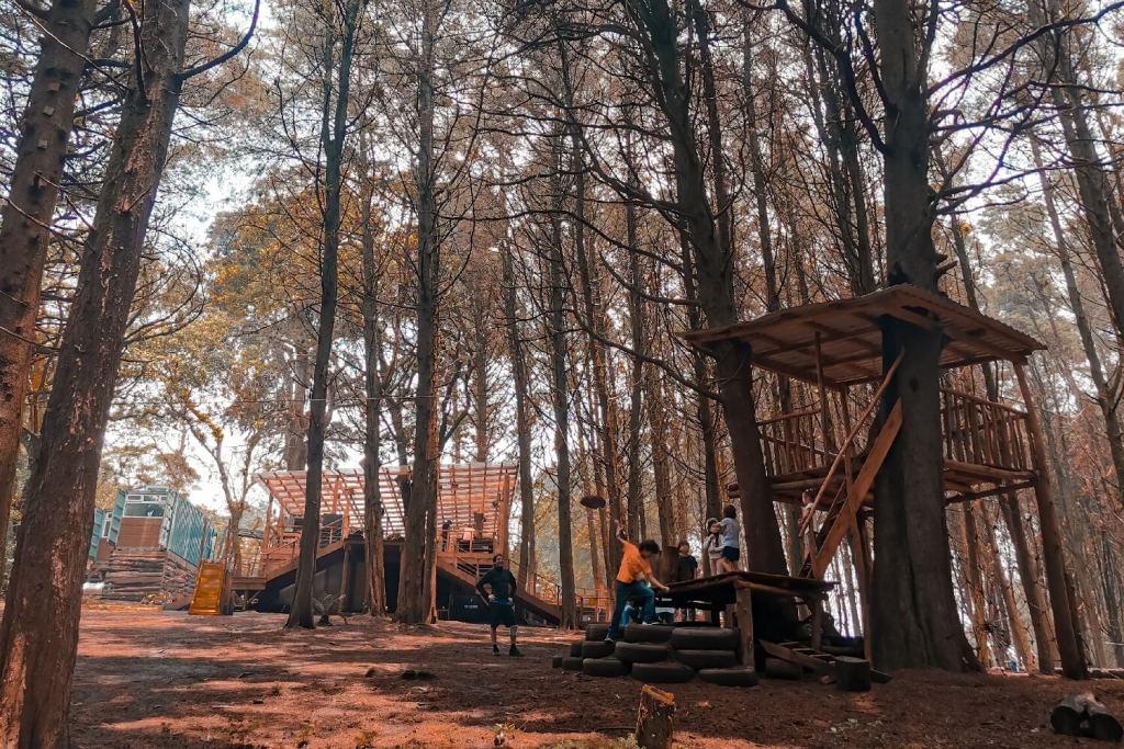 Ausflüge ab Guatemala Stadt Bikepark