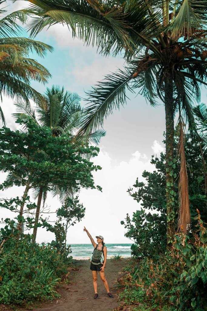Tortuguero Nationalpark in Costa Rica Strand