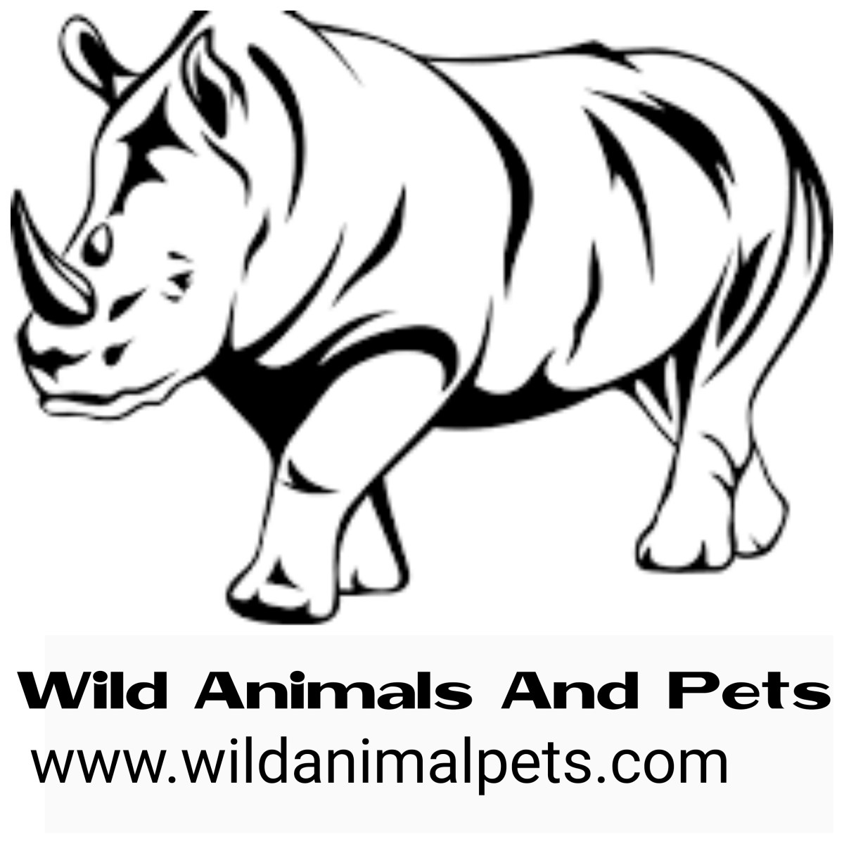 ANIMALS YOU CAN BUY ONLINE AT AFFORDABLE PRICES