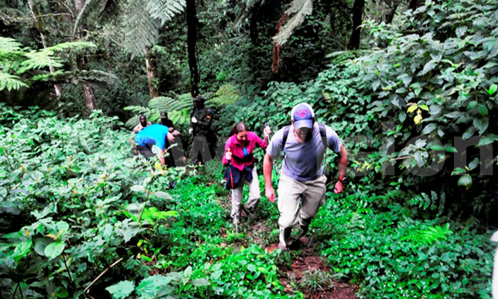 EXPLORE TOURISM AND NATURE IN UGANDA