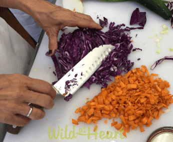 Wild Fermentation Summer workshop
